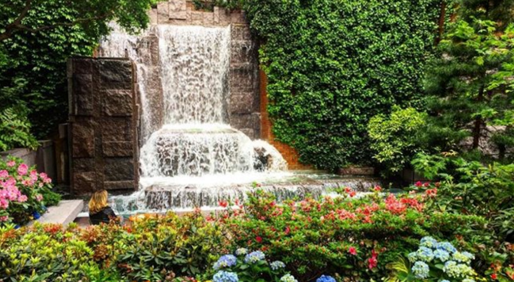 Discover 10 Stunning Secret Gardens Hidden In New York City