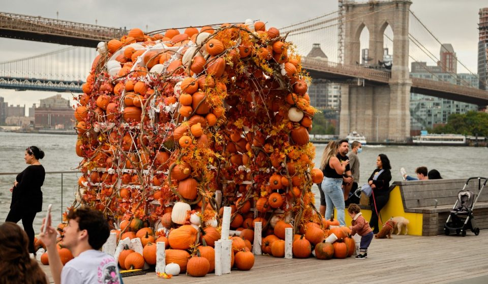 South Street Seaport's Amazingly Over-The-Top Pumpkin Arch Is Back For Fall