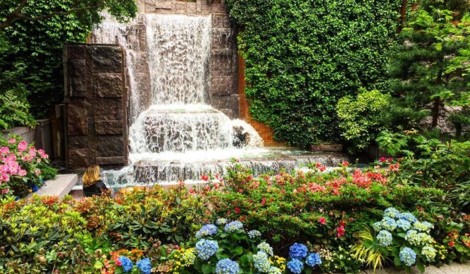 10 Stunning Secret Gardens Hidden In New York City